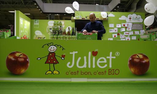 táo juliet - táo hữu cơ đầu tiên trên thế giới